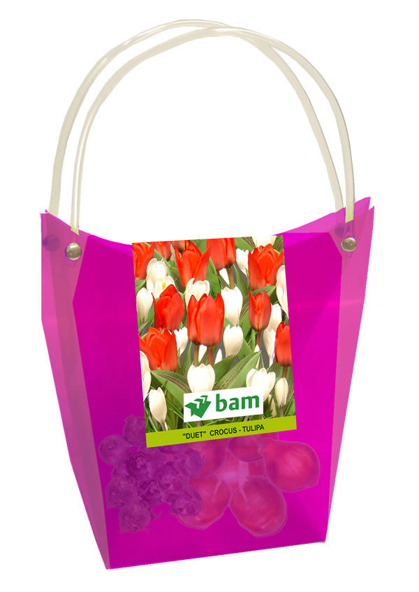 Business Gifts Flower Bulbs