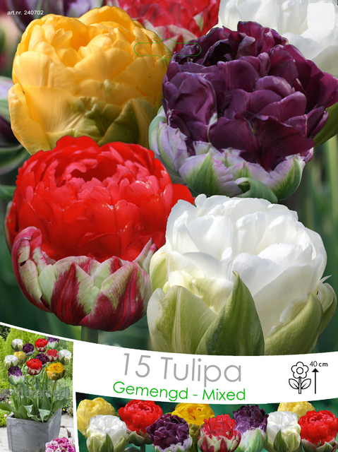 Tulips Double Ice Cream Mix For Sale Buy Online For 163 7 99