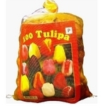 Tulip Bulbs Triumph Mix (Big Bag)