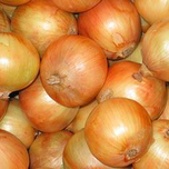 Plant Onions Yellow (500 gr)
