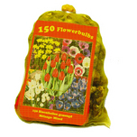 150 Mixed Flower Bulbs