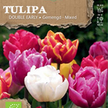 tulipa double mix bio