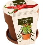 Grow Your Own Peppers Kit