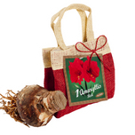 Christmas Bag Amaryllis Red