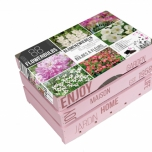 Wooden Case Pink Summer Bulbs