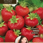 Strawberry Ostara (Garden ready)