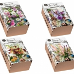2x Grow Your Own Bouquet – Flower Bulb Collection
